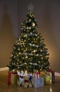 Christmas tree, Design Pics Inc, Rex Features.JPG
