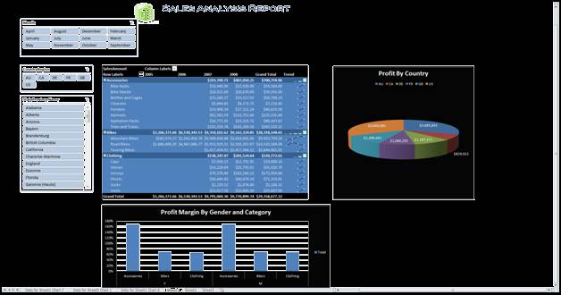 A compelted BI report using PowerPivot