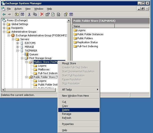 Delete an Exchange 2003 store after dismounting it.