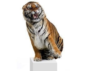 Taming the big data analytics tiger