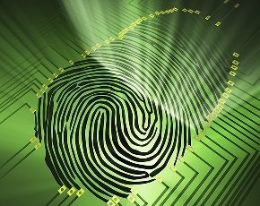 Fingerprint scanners most popular alternative to banking password