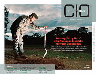 CIO_decisions_june_2013_cover.png