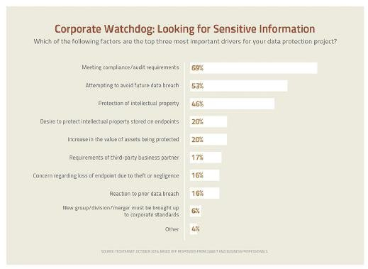 Corporate Watchdog:  Looking for Sensitive Information