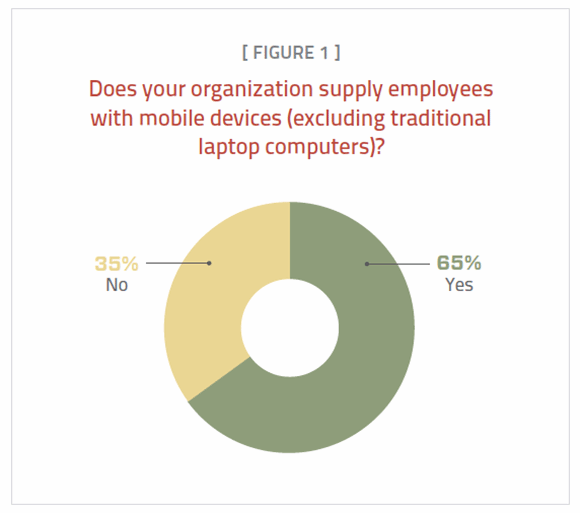 Figure 1. Many companies no longer issue mobile devices, apart from laptops.