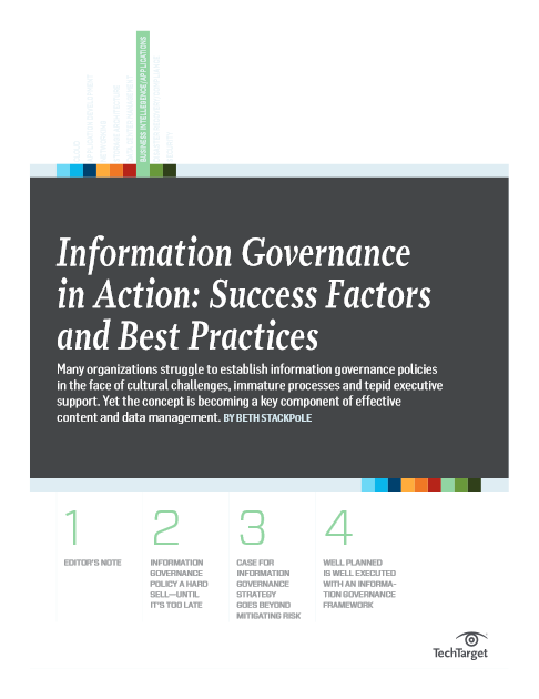 Information_Governance_in_Action-Success_Factors_and_Best_Practices.PNG