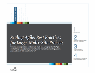 SSQ_handbook_scaling_agile_cover_0513.png