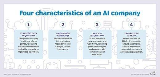 AI company characteristics