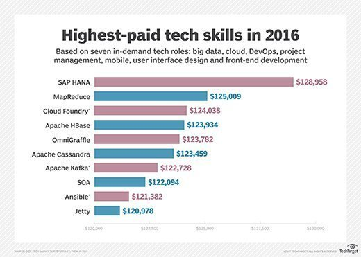 Highest-paid tech skills in 2016