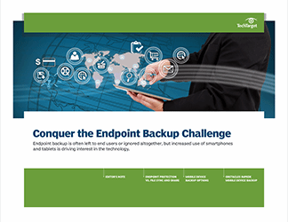 conquer_endpoint_backup.png