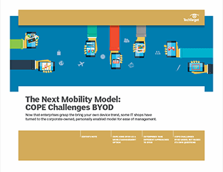 cope_challenges_BYOD.png