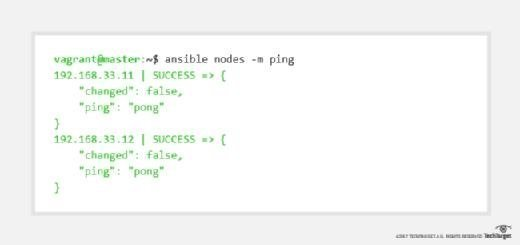 Ping Vagrant nodes with Ansible