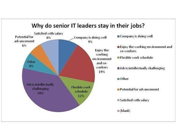 Why do senior IT leaders stay in their jobs