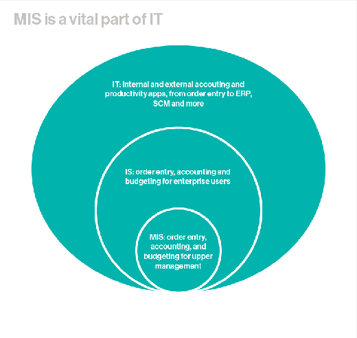 Role of MIS in IT