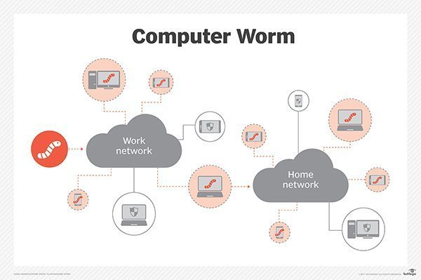 How A Network Worm Works