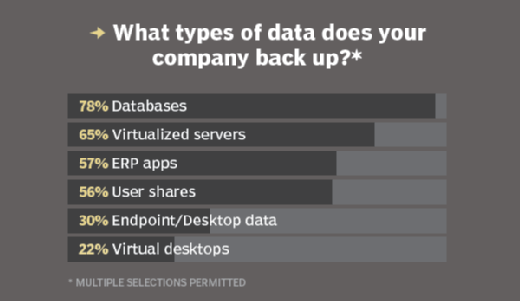 Data types that are backed up