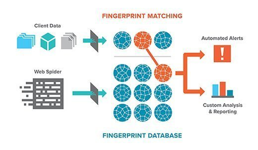 matchlight fingerprint hash matching