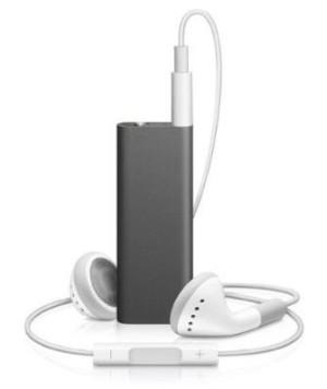 iPod Shuffle (300 x 356).jpg