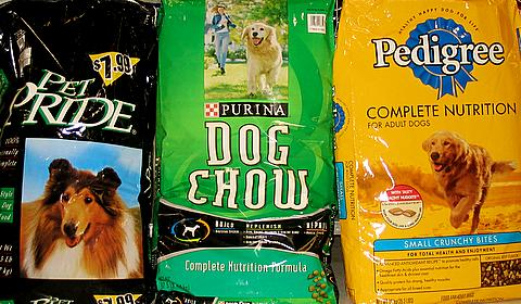 Dogfood_options-1.jpg