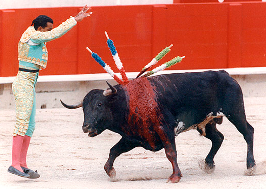 Matador harms bull with banderillas.png