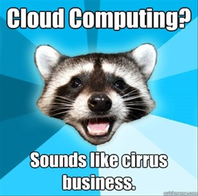 Image of raccoon discussing cloud computing