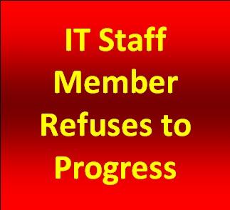 IT Staff member