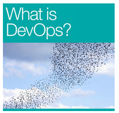 "The Cover of the O'Reilly Book - ""What Is DevOps"""