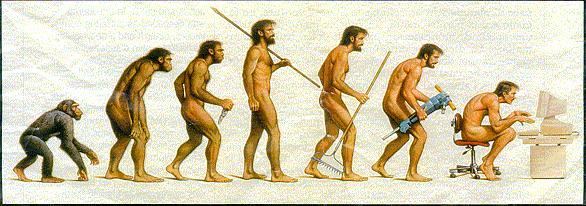 evolution-of-programmer