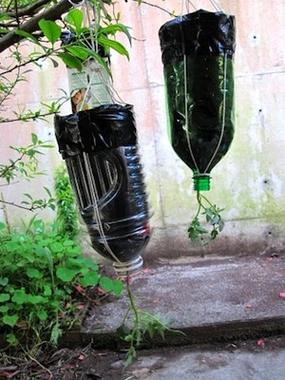 Upside-Down-Planter-285x380