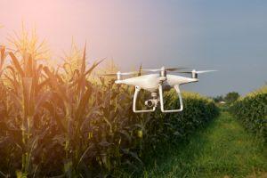 Drone, IoT, smart farming