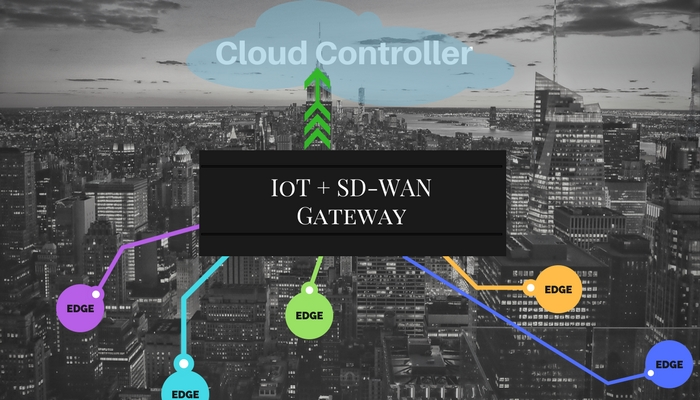 SD-WAN gateway, IoT gateway