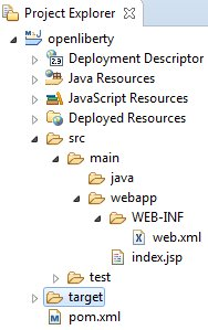 Embedded WebSphere Liberty project structure