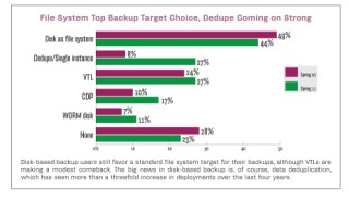 File system top backup target choice