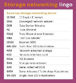 STORAGE NETWORKING LINGO