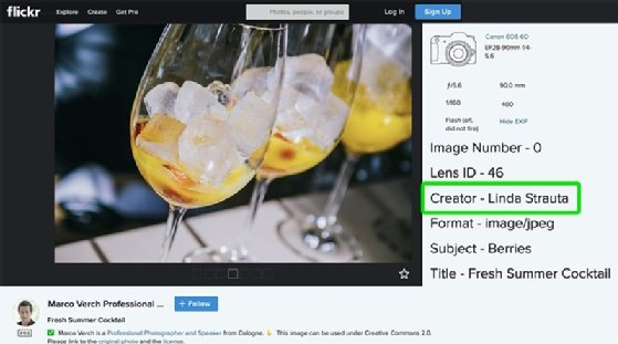 How using 'free' photos on the internet can lead to lawsuits and fines