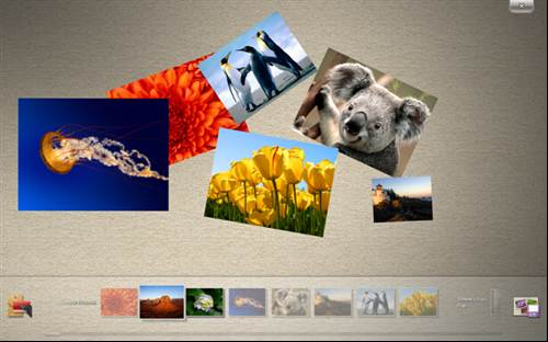 Microsoft Surface Collage - Windows 7 touch pack - Photos