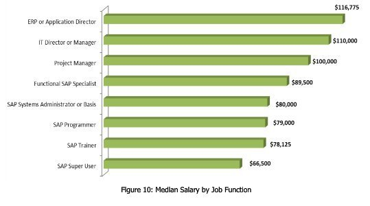 Panaya2012 SAP Salary Survey