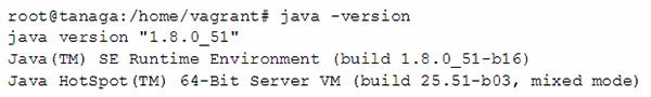 JRE version command