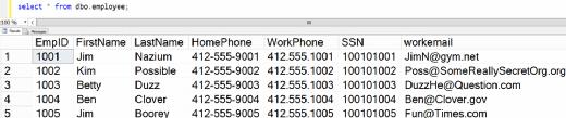 Figure 14. Verifying data in Azure SQL Database.