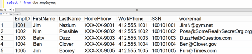 Figure 16. The employee table with the masking rule for HomePhone applied.