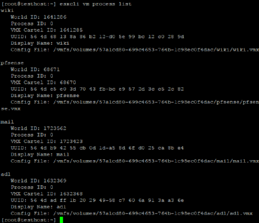 The esxcli vm process list command in action