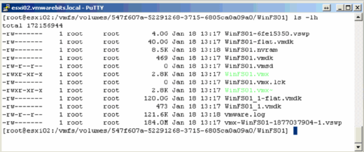 VM with two virtual disks.