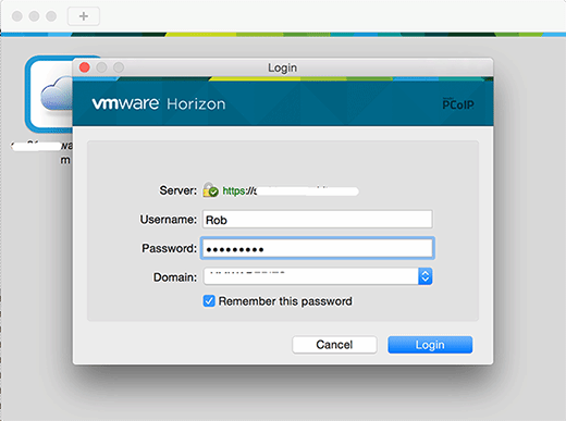 Save passwords for Horizon Client