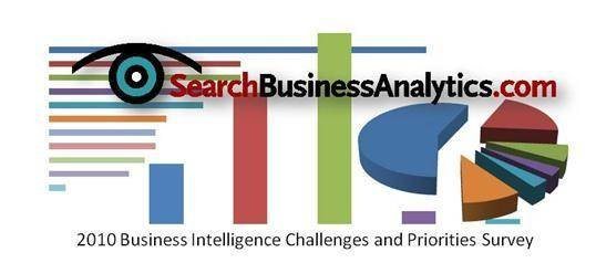 2010 Business Intelligence Challenges and Priorties Survey