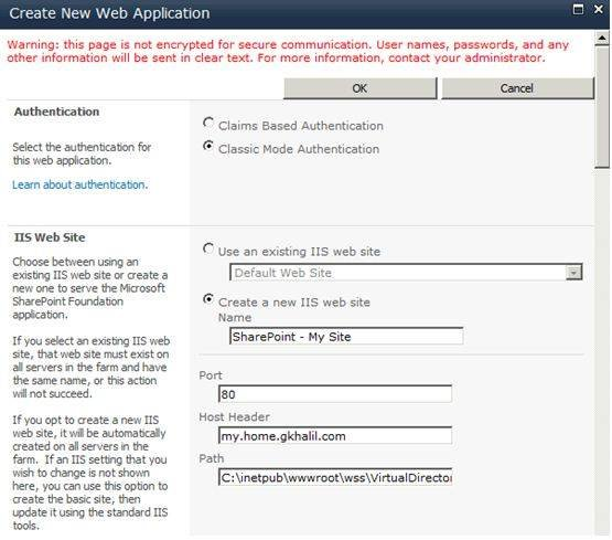 Choose your authentication method and fill out your IIS website info.