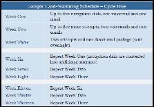 Sample Lead-Nurturing Schedule -- Cycle One