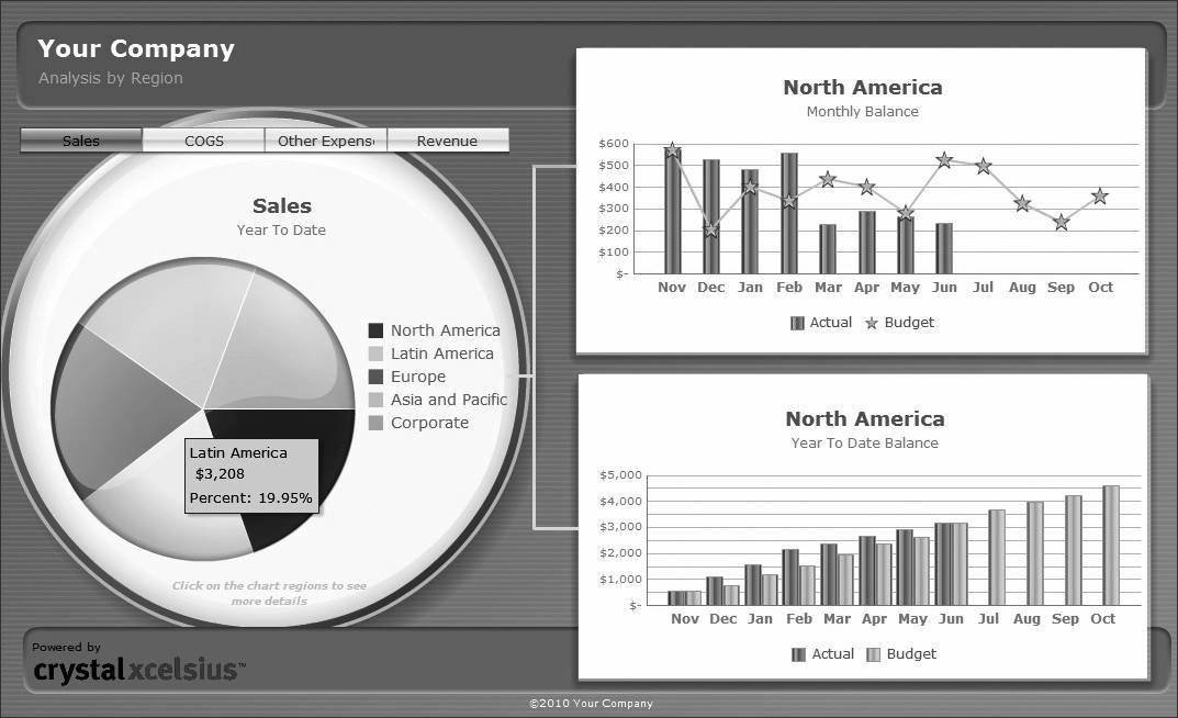 Features and functionality of sap xcelsius 2008 typical dynamic dashboard created with xcelsius 2008 gumiabroncs Image collections