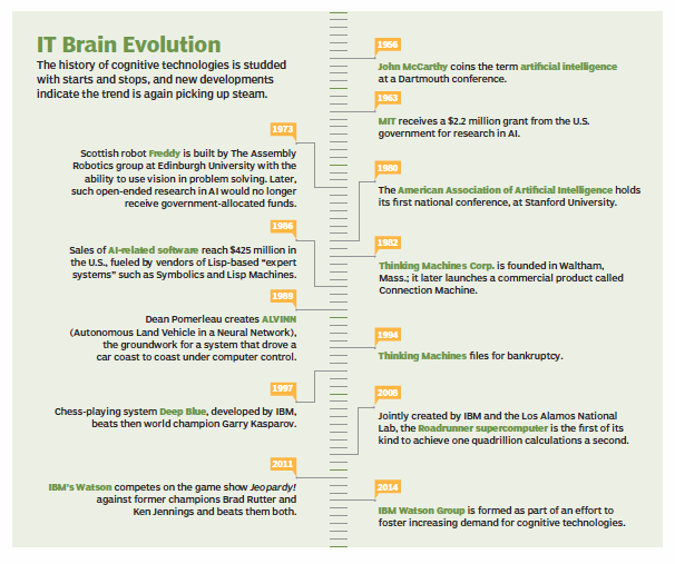 IT brain evolution