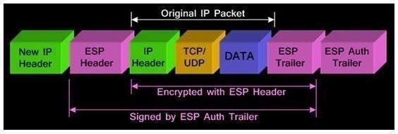 Ein IP-Paket ist komplett durch das IPsec-Tunnelmodus-Protokoll geschützt.