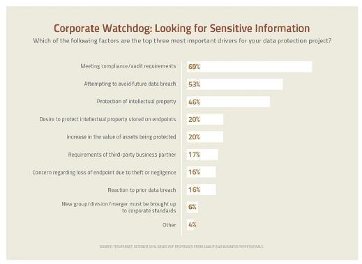 Corporate Watchdog:  Looking for Sensitive Information