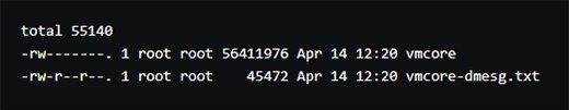 Abbildung 4: Die Konsole zeigt an, wo sich die Dateien vmcore und vmcore-dmesg.text befinden.